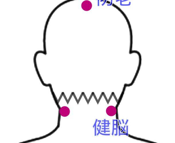 薄毛・脱毛症の鍼治療〜閻三針(エンサンシン)のツボ解説