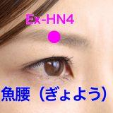 【ツボ解説】魚腰(ぎょよう)Ex-HN4 〜目がパッチリ大きくなる!