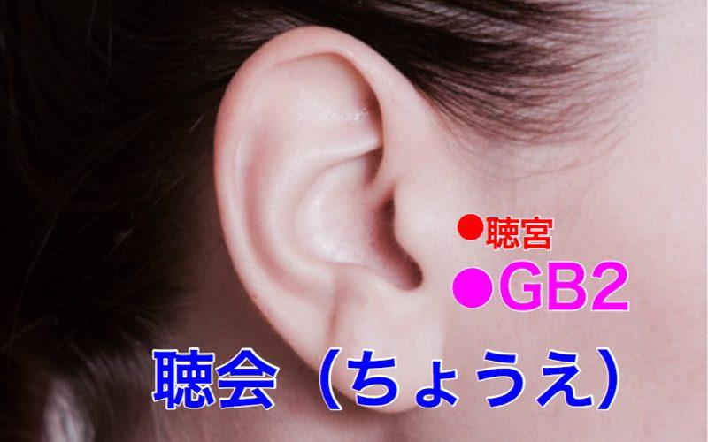 【ツボ解説】聴会(ちょうえ)GB2 〜シャープなアゴの方が好きですか?
