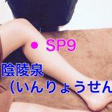 【ツボ解説】陰陵泉(いんりょうせん)SP9 〜血のパワーを高めるツボ