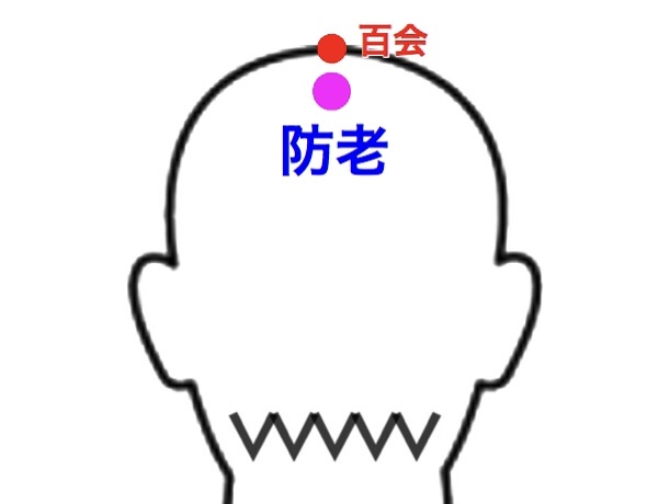 【ツボ解説】防老(ぼうろう)〜アンチエイジングには欠かせない