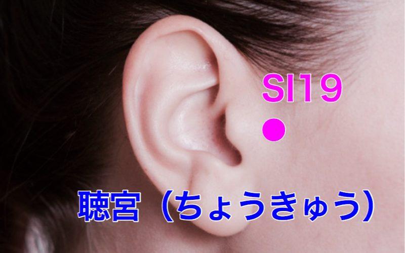 【ツボ解説】聴宮(ちょうきゅう)SI19 〜口角が上がると幸せになる!?